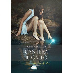 cantera-il-gallo-500x500